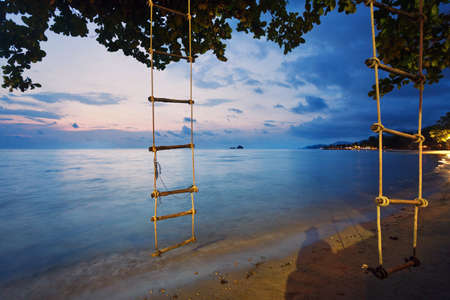 rope ladder: Rope ladder hanging from a tree on night beach Stock Photo