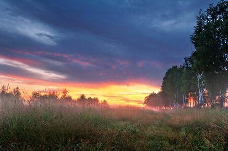 Foggy sunset in summer field.