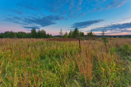Landscape with coloful sunset in summer field  Stock Photo