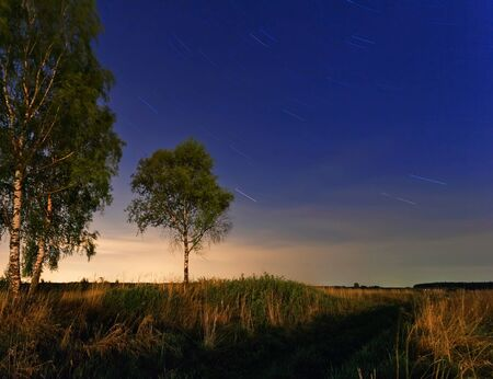 nightly landscape with field and grass