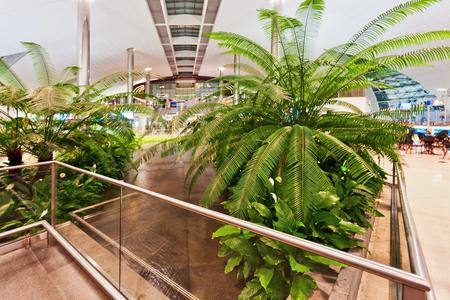 metallic stairs: DUBAI, UNITED ARAB EMIRATES - NOVEMBER 7, 2009: Futuristic interior of international airport of Dubai. Dubai airport has a maximum capacity of 60 million passengers, 2.1 million tons of cargo per year