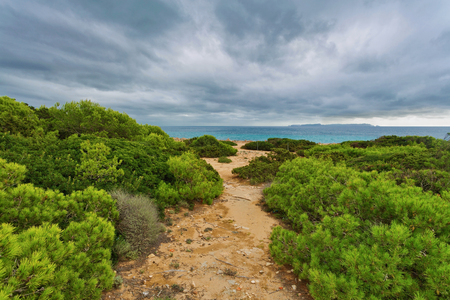 Way through the Dunes of Cala Mesquida under gloomy sky, Es Trenc beach, Ses Salines, Mallorca island, Spain Mediterranean Sea, Balearic Islands.