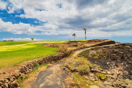 Golf course. Beautiful landscape of a golf court with palm trees on ocean background. Tenerife island. Canary. Spain Stockfoto