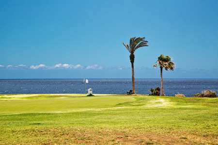 Golf course. Beautiful landscape of a golf court with palm trees on ocean background. Tenerife island. Canary. Spain Imagens