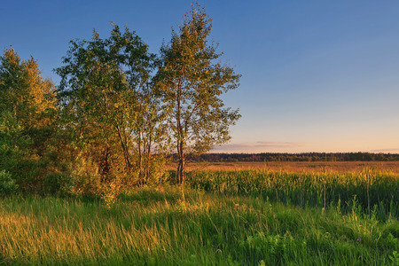 Landscape with coloful sunset in summer field Stockfoto - 122399063