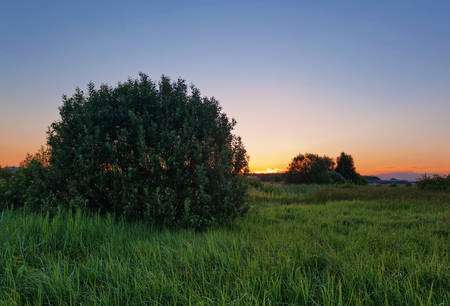 Landscape with coloful sunset in summer field Stockfoto - 122399069