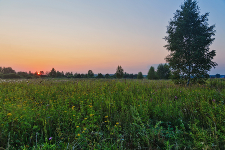 Landscape with coloful sunset in summer field Stockfoto - 122398880