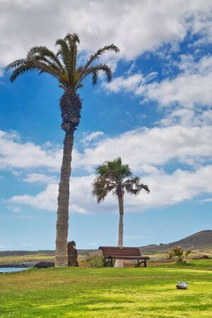 Golf course. Beautiful landscape of a golf court with palm trees on ocean background. Tenerife island. Canary. Spain 版權商用圖片