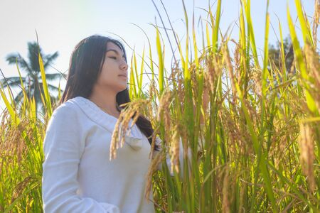 Beautiful young asian woman in the green rice fields meadow