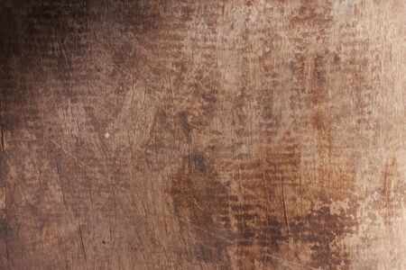 texture of bark wood use as natural background. 版權商用圖片