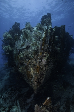 ship wreck: Close up of the Bow of the Benwood in Key Largo, Florida. With a Blue Water Background
