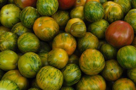 Melons 1 Reklamní fotografie