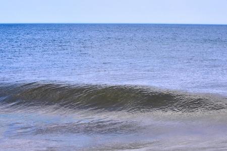 dewey: Wave 1