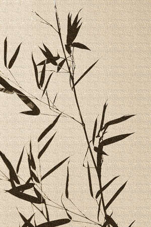 abstracted: Bamboo, abstracted