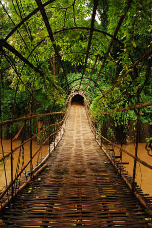 interior wallpaper: bamboo bridge