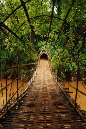 muralla china: Puente de bamb�