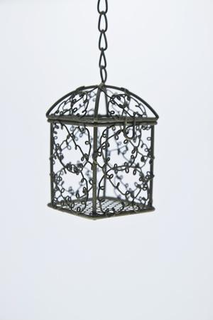 birdcage isolated white background Stock Photo - 10990270