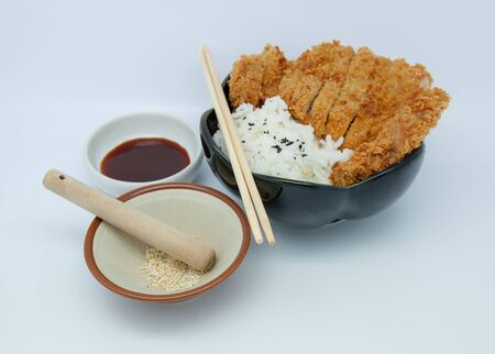 Japanese food style, rice with fried chicken