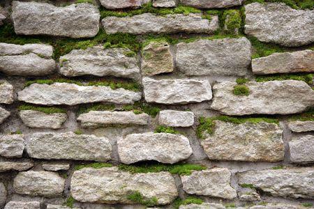 liquen: Old un muro de piedra cubierto por un musgo