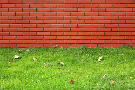 Red brick wall and green grass nearby photo