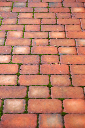 cobble: old pavement of red stones