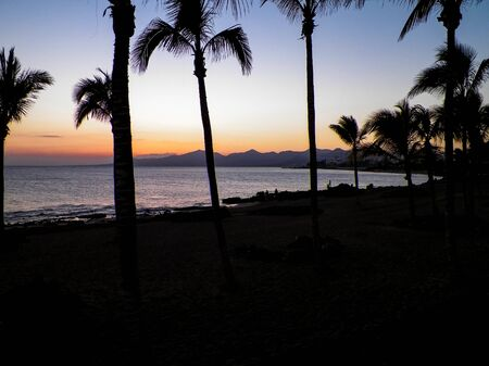 Palm trees an sunset in Puerto del Carmen, Lanzarote, Canary Islands. Travel and nature concept. Stok Fotoğraf
