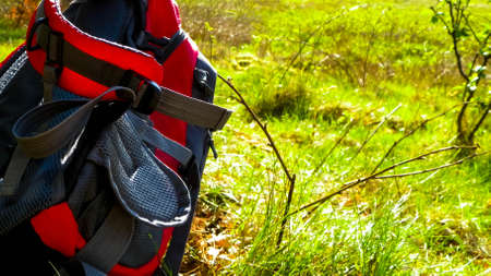 Backpack on meadow. Beautiful kashubian nature. Travel to Poland concept. 版權商用圖片