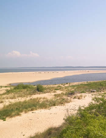 Baltic Sea Coast on Sobieszewska Island. The estuary of the Vistula River. Nature of northern Poland.