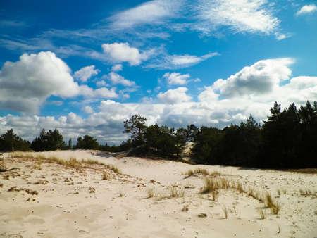 Sand dunes in Stilo, Leba. Coastal area of Northern Poland. 版權商用圖片