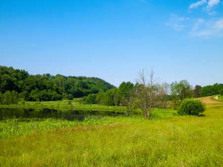 Hills, fields and meadows - beautiful landscape of Wiezyca, Kashubia Region, northern Poland. Copy Space on blue sky. 版權商用圖片
