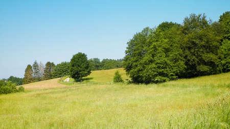 Hills, fields and meadows - beautiful landscape of Wiezyca, Kashubia Region, northern Poland. Copy Space on blue sky. Stok Fotoğraf