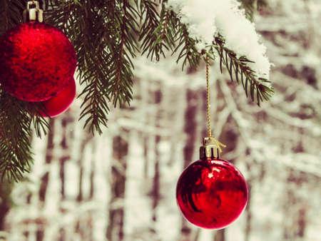 Christmass ball on tree twig. Christmas time. Copy space.