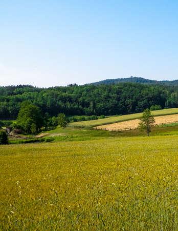 Hills, fields and meadows - beautiful landscape of Wiezyca, Kashubia Region, northern Poland. 版權商用圖片
