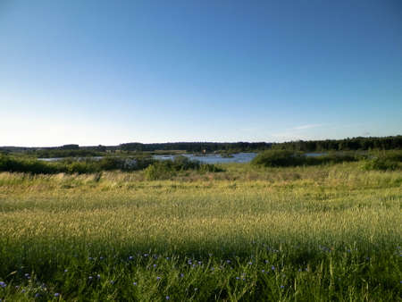 Landscape of meadow and pond in background. Summer season, polish nature, picture from Kashubian, Pomeranian Voivodeship. 版權商用圖片