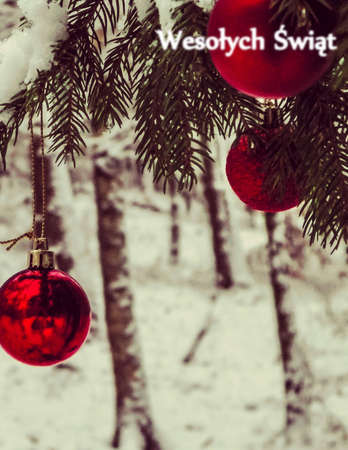 Christmass balls on tree. Christmas time. Copy space and Merry Christmas in polish language - Wesolych Swiat text. Christmas greetings card.
