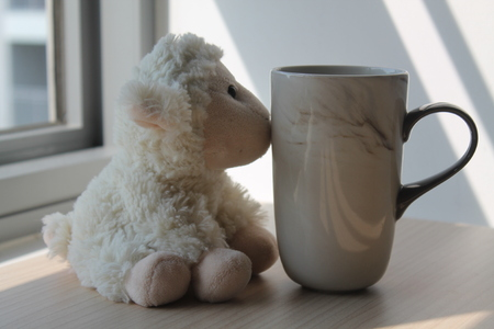 Lamb toy with cup sitting by the window in shadows Foto de archivo