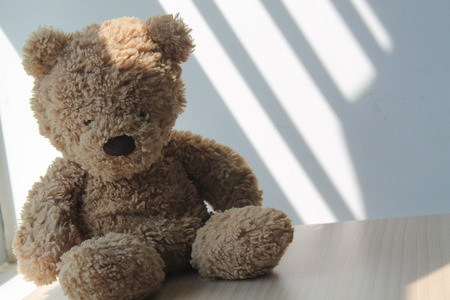 Brown Bear toy sitting by the window in shadows