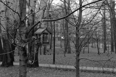 Feeders for bird . tree house for the birds, cheerful apartment, monochrome background Reklamní fotografie