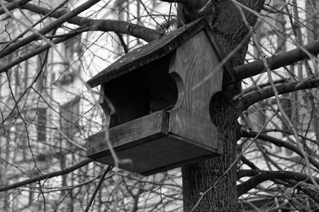 Feeders for bird . tree house for the birds, cheerful apartment, monochrome background Stok Fotoğraf