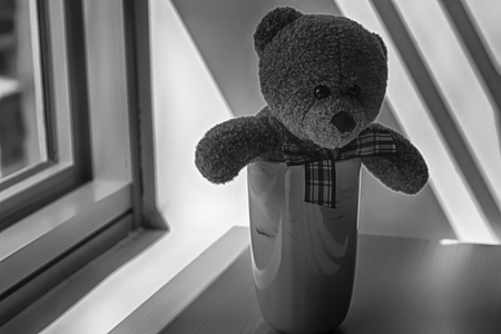 Monochrome Bear toy with cup sitting by the window in shadows.