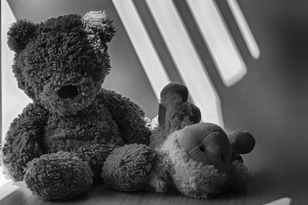 Monochrome Bear and lamb (sheep) toy sitting by the window in shadows.