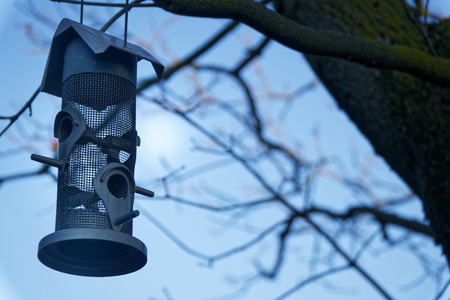 Metalic Feeders for bird . tree house for the birds, cheerful apartment.