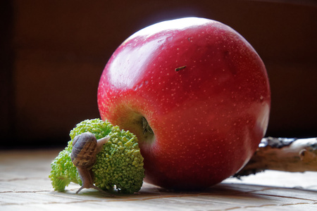 Snail sitting on red apple and tree trunk and go to green broccoli, wooden bamboo backdrop, close-up animal background. 写真素材