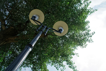 Street lamp in public park, business concept