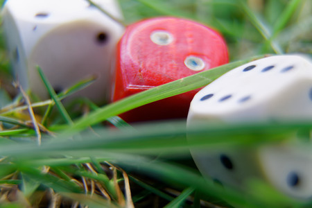 Close-up dice on the grass, chance for winning.