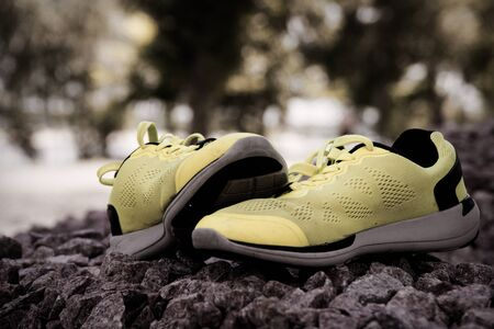 Trail running shoes in a park, close-up sneakers. Running shoes before practice. Sport active lifestyle concept. Horizontal photo banner for website header design.