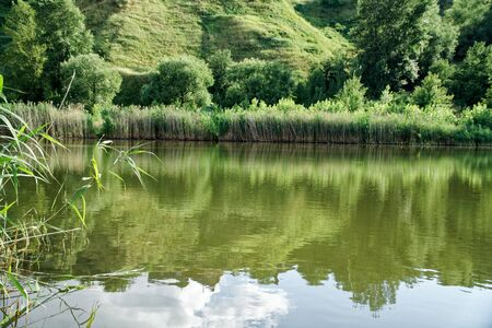 Reeds and clouds reflect in pond, romantic mood fresh breath. Imagens