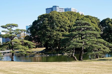 Downtown centre in Tokyo city. View from public park. Tokyo's Skyline. 版權商用圖片