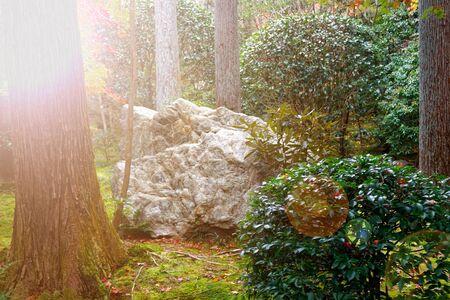 Japan park with boulders. Panorama of rockery rock garden. gardening background panoramic view. gardener backyard design element.