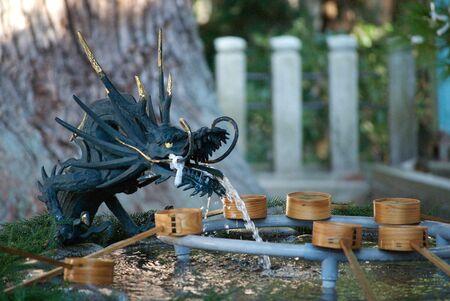 purification: Dragon shaped purification pool